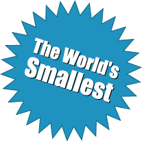 The World's Smallest